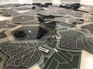 Le Radar de l'Innovation de la CE reconnaît l'innovation d'ARMOR solar power films