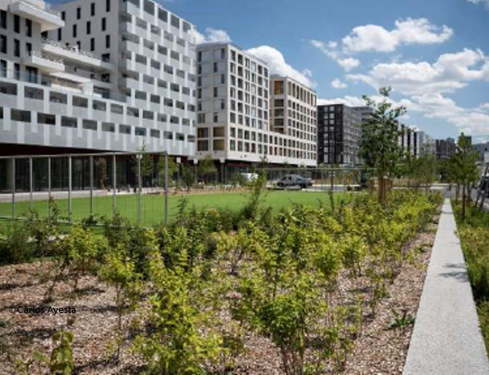 Bouygues Immobilier et Paris La Défense obtiennent  le label «BiodiverCity® Ready».
